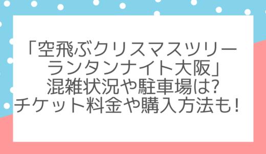 空飛ぶクリスマスツリーランタンナイト大阪|混雑や駐車場にチケット料金は?