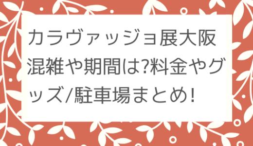 カラヴァッジョ展大阪|混雑や期間は?/料金やグッズ/駐車場まとめ!