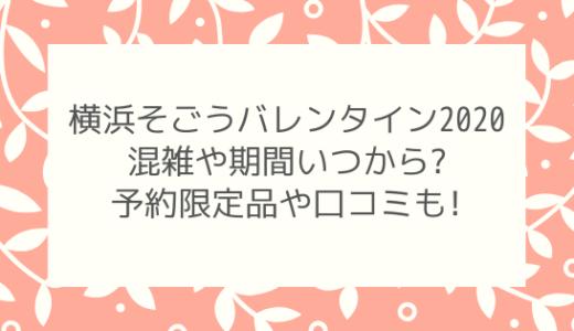 横浜そごうバレンタイン2020混雑や期間いつから?予約限定品や口コミも!